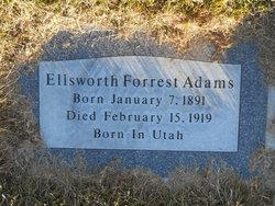 Lewis Forrest Adams, Sr