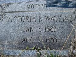 Victoria Narcissus <i>Ellenburg</i> Watkins