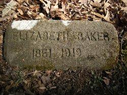 Sarah Elizabeth <i>Fulford</i> Baker