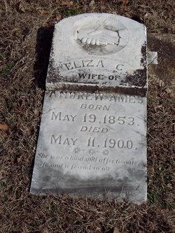 Eliza C Ames