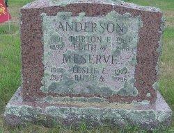 Edith W Anderson