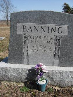 Charles M Banning