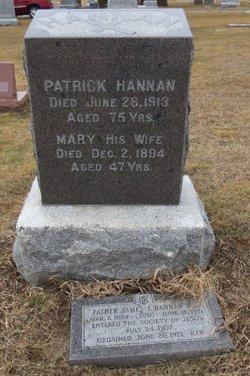 Patrick C Hannan