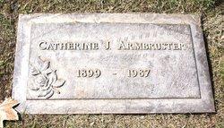 Catherine J Armbruster