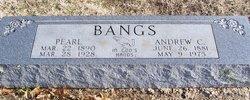 Andrew Calvin Bangs