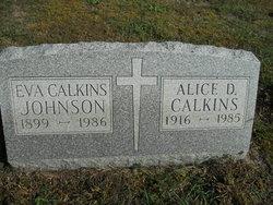 Alice Dorothy Calkins