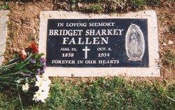 Bridget <i>Sharkey</i> Fallen