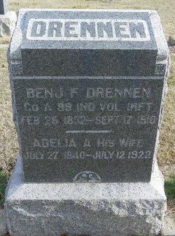 Adelia Ann Delia <i>Wise</i> Drennen