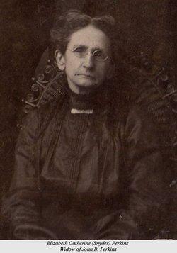 Elizabeth Catherine <i>Snyder</i> Perkins