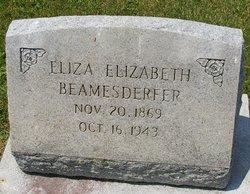 Eliza Elizabeth <i>Snyder</i> Beamesderfer