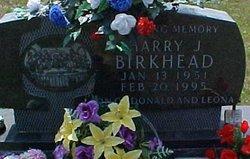 Harry J Birkhead