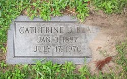 Catherine J Beal