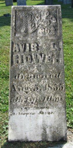 Avis L. Howe