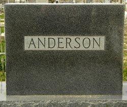Thomas Willis Anderson