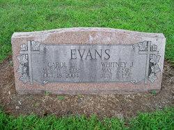 Carol Ann <i>Loftus</i> Evans