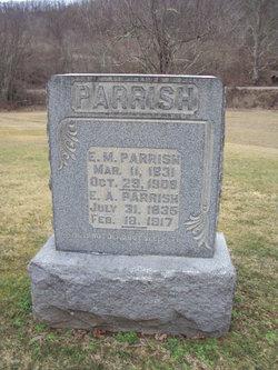 Edward Marion Parrish