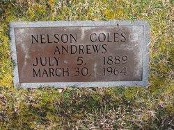 Nelson C. Andrews