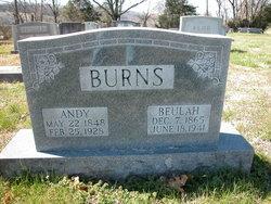 Andy Burns