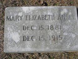 Mary Elizabeth Ansel
