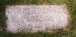 Cybele <i>Brooks</i> Flower