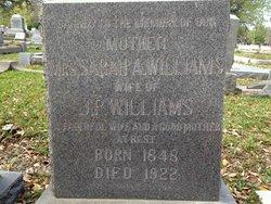Sarah Ann <i>Stride</i> Williams