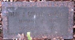Debi J. <i>Collie</i> Arnold