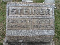 Jacob Steiner