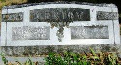 Albert Sidney Gentry