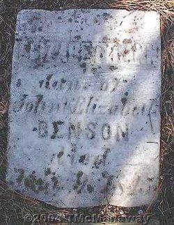 Elizabeth Ann Benson