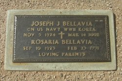 Joseph J Bellavia