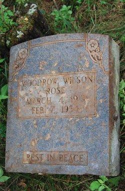 Woodrow Wilson Rose