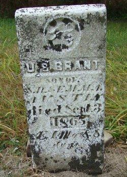 U. S. Grant Austin