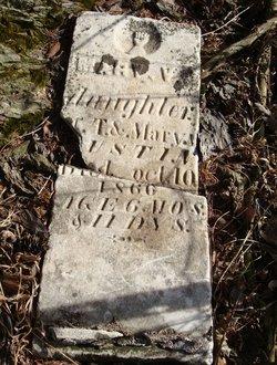 Mary V. Austin