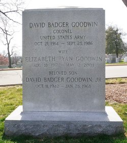 David Badger Goodwin, Jr.