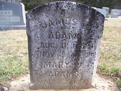 Mary Jane <i>Baker</i> Adams