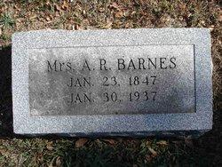 Frances J. <i>Sales</i> Barnes