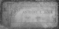 Anthony F Janik