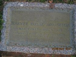 Harvey Edsal Anderson