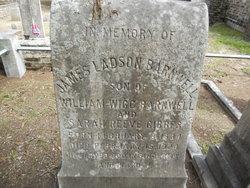 James Ladson Barnwell