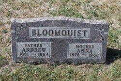 Andrew Bloomquist