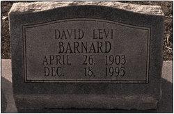 David Levi Barnard