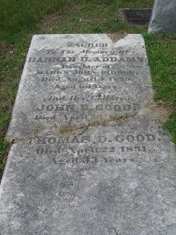 Hannah D. <i>Biddle</i> Addams