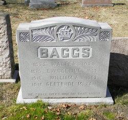 William A Baggs
