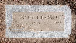 Agnes J Barchus