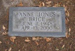 Anne Sigel <i>Jones</i> Brice