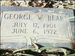 George Washington Bear