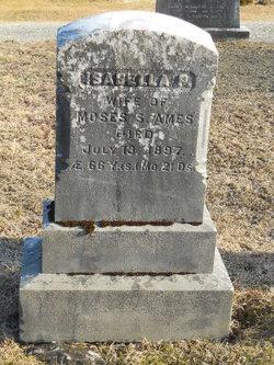Isabella P Ames