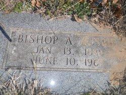 Bishop A Ausbie