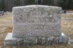 Hildred Idella <i>Bean</i> Towne Springer