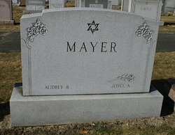 Joyce E <i>Ascher</i> Mayer